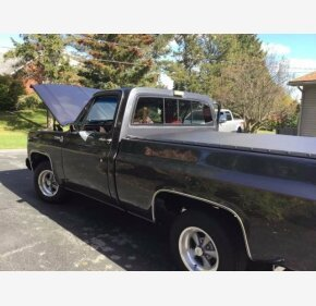 1977 Chevrolet C/K Truck for sale 100913453